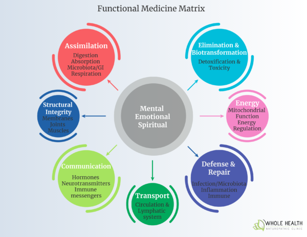 Functional Medicine Matrix Diagram