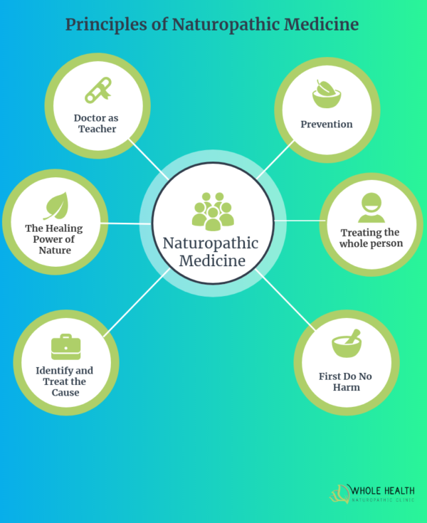 Principles of Naturopathic Medicine Diagram